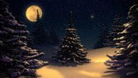 圣诞夜高清诗频素材
