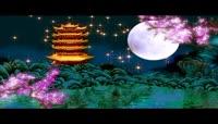中秋节明月夜