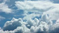 白云一朵朵