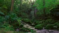 森林小河流水