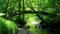 林中小桥流水