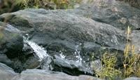 山间泉水缓缓流淌