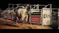 牛马市场素材西班牙斗牛