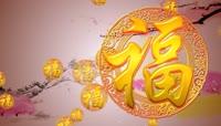 25节日庆典生日寿宴片头视频素材