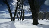 64殷秀梅歌曲我爱你塞北的雪配乐成品视频背景