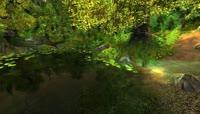 17高清4k绿叶流水鸟语花香的世外仙境之地