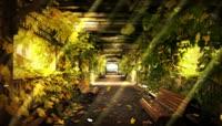 11梦幻般的如诗如画的大自然仙境之地