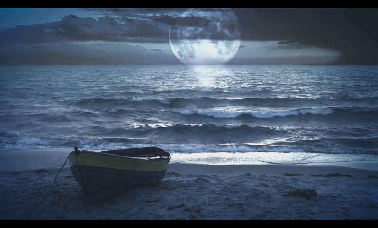 VJ 007 花魔法之夜月亮视频背景