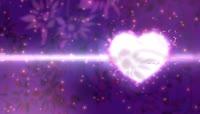 8、情人节vj视频