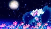 唯美夜色月亮星空星星夜晚