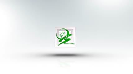 f 2栏目包装logo