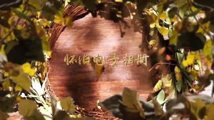 会声会影X8模板 唯美花丛清新婚礼相册展示4