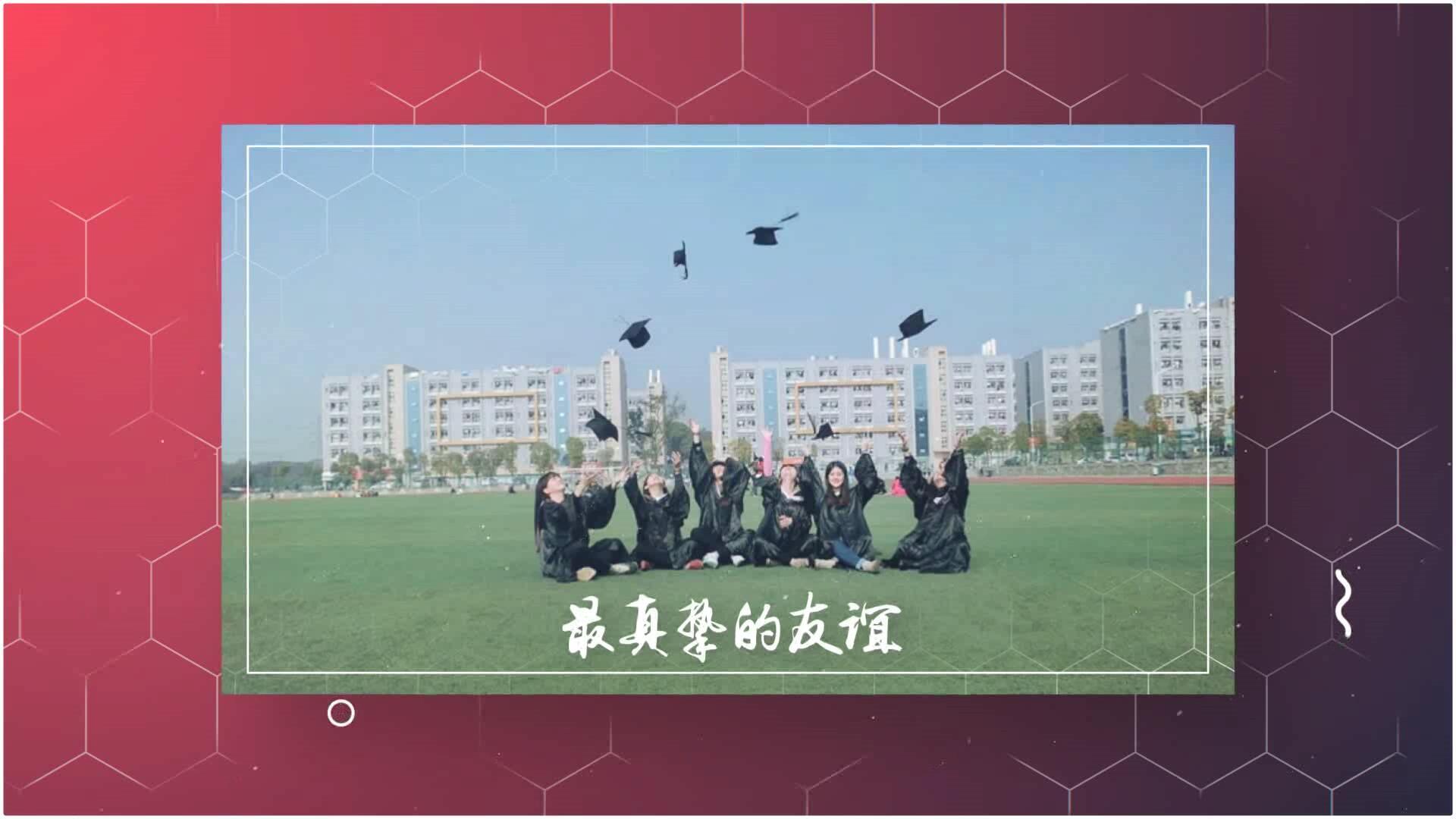 我们毕业了毕业季图文展示AE模板