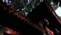 ST00991秋王城公园树叶飘落特写老人树叶落叶扫帚打扫卫生