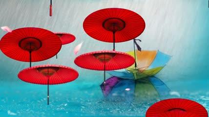ST00273唯美意境雨伞情花瓣油纸伞浪漫雨景