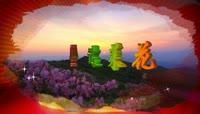 ST00127金达莱舞台灯光杜鹃花映山红朝鲜花枝民族延边