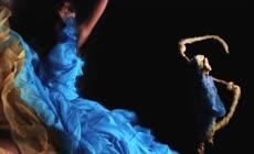 高清电视广告毛笔油彩美女跳舞荧光鸟水滴