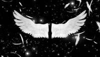 M1267新娘出场天使翅膀