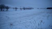 东北冬季雪乡小镇炊烟袅袅视频素材