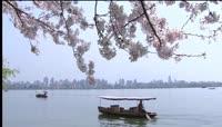 杭州西湖旅游风景唯美风光实拍素材