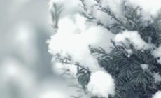 美丽的冬季雪景高清延时摄影