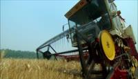 农业农民庄稼收割水稻玉米蔬菜水果实拍素材