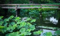 苏州园林山水古典园林宣传片
