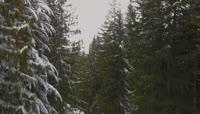 高清航拍冬天大雪雪景视频