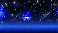 蓝色星空粒子光斑蝴蝶飞舞动画高清视频素材