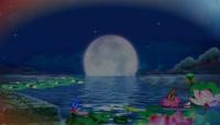李玉刚莲花荷塘月色大月亮背景视频