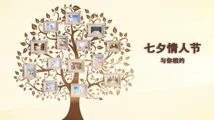 温馨浪漫故事树爱情婚礼相册AE模板