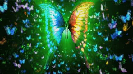 3D蝴蝶飞舞背景视频