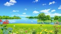 草地湖边花丛蝴蝶飞舞田原风景