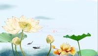 古典中国风水墨荷花金鱼背景高清视频素材