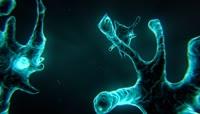 神经元背景视频素材演示动画