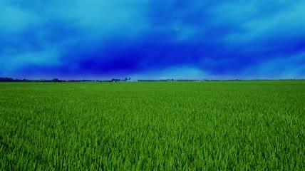 干打雷不雨气候恶劣极端天气农业科技