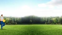 参天大树生长动画绿色生态环境