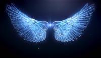 浪漫梦幻粒子飞翔的翅膀