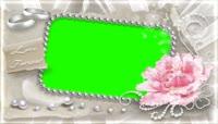 唯美大鲜花珍珠视频框绿屏抠像