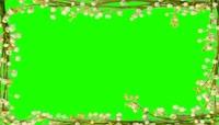 鲜花相框绿屏抠像