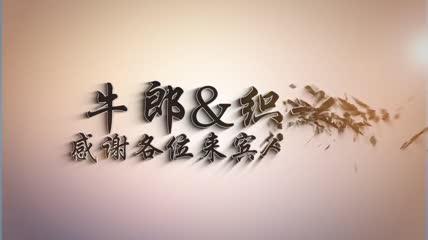 浪漫爱情方格七夕表白婚礼相册AE模版