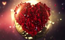 浪漫鲜花金色婚礼AE模板