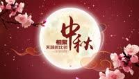 唯美浓情中秋节祝福视频素材