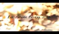 铺满了金黄落叶的秋色记忆AE相册模板