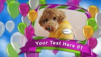 多彩气球宠物照片动态模板