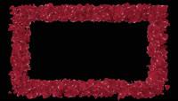 玫瑰花瓣主题视频素材