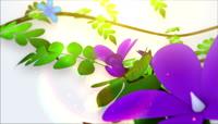 蝴蝶群飞logo展示唯美漂亮