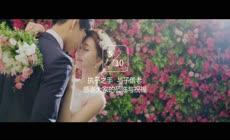 会声会影x8模板 最新韩式唯美小清新婚礼电子相册幻灯片求婚表白情人节