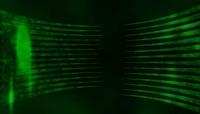 绿色线条装上下循环动画视频