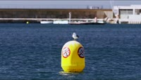 欧洲滨海小城人文景观高清实拍视频素材
